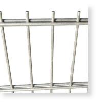 Doppelstabmatten Zaunelemente, Metallzaun 8/6/8, H x B 630 x 2.500 mm