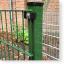 Zaunpfosten 60/40 mm für Doppelstabmatten mit Kunststoffhaltern RAL 6005 moosgrün